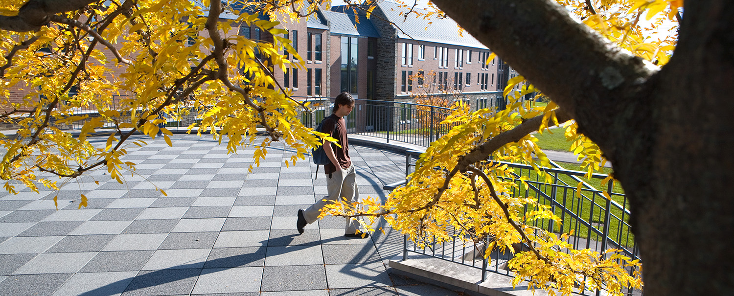 Student walking across north campus in the fall with yellow leaves around him