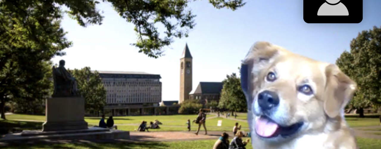 Cedric virtually hanging out on the Arts Quad via Zoom